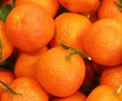 Mandarinenmarmelade mit Vanille und Zimt