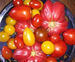 KetchUp aus frischen Tomaten ohne Zucker