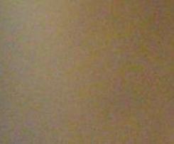 Beschwipstes Himbeer-Schichtdessert