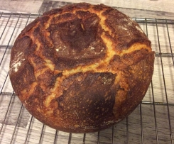 Emmer, oder Dinkel Quark Brot