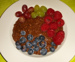 Zoat - Schokoladenporridge (WW tauglich)