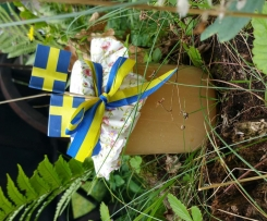 Schwedisches Apfelmus (Äppelmos)