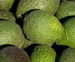 Gerrys Avocado-Orangen-Sorbet mit Grand Marnier, Amaretto und Pistazien